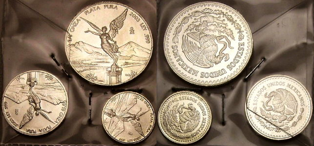 Fractional silver Mexican Libertads from www.lainson.eu